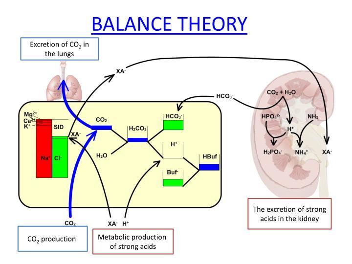 BALANCE THEORY
