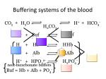 buffering systems of the blood