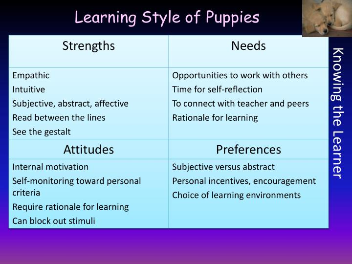 Learning Style of Puppies