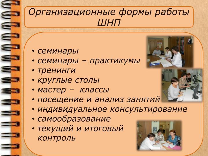 Организационные формы работы ШНП