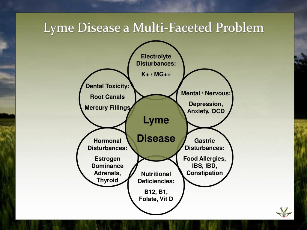PPT - Symptoms: common and less common Lyme Disease Misdiagnosed as