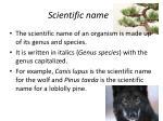 scientific name