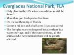 everglades national park fla