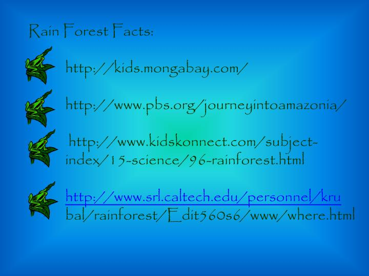 Rain Forest Facts: