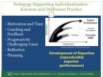 pedagogy supporting individualization ericsson and deliberate practice