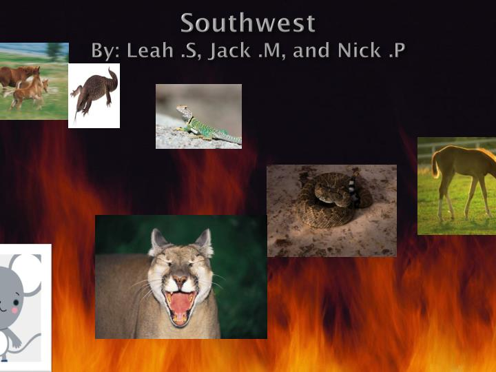 southwest by leah s jack m and nick p n.