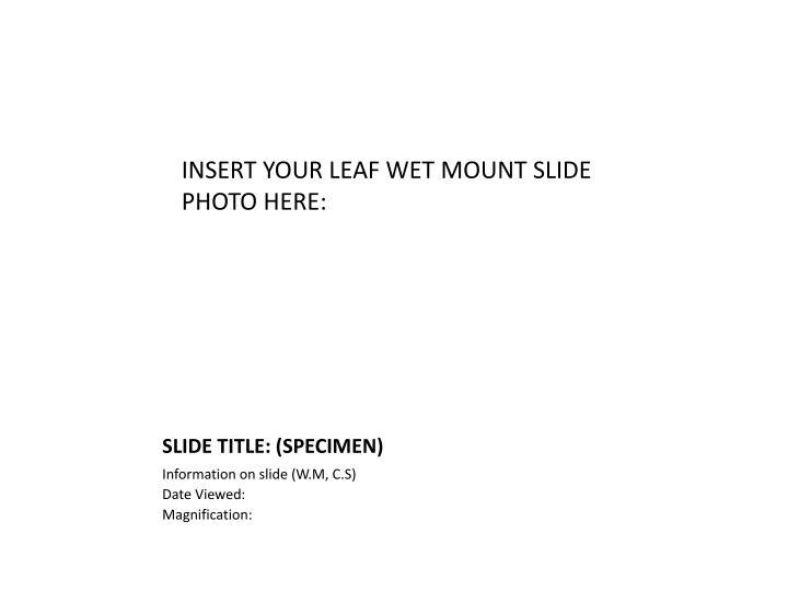 INSERT YOUR LEAF WET MOUNT SLIDE
