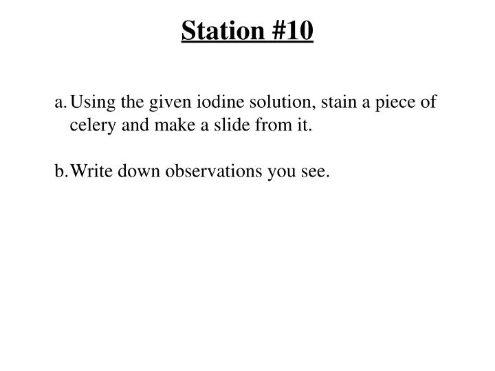 Station #10