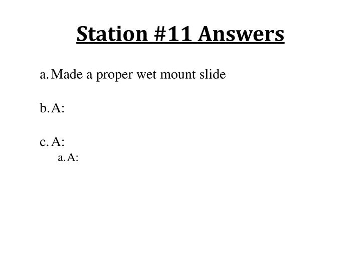 Station #11 Answers