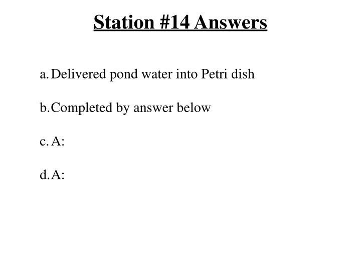 Station #14 Answers