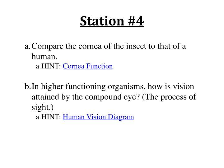 Station #4