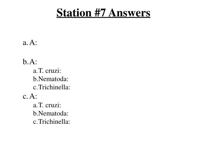 Station #7 Answers