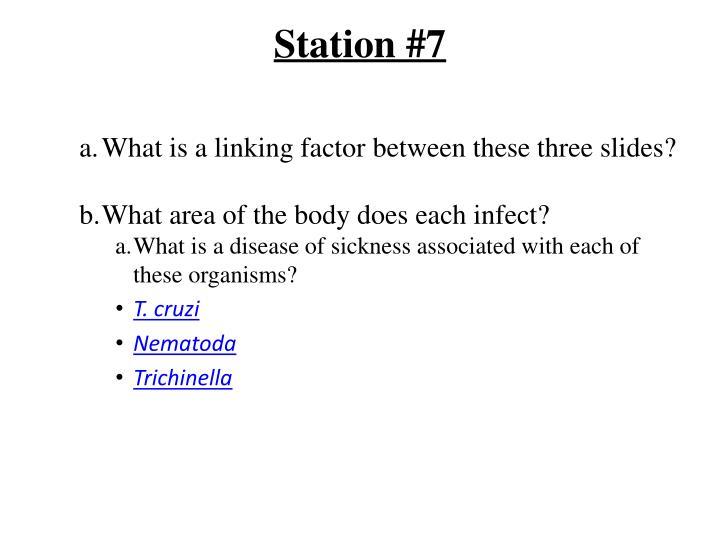 Station #7