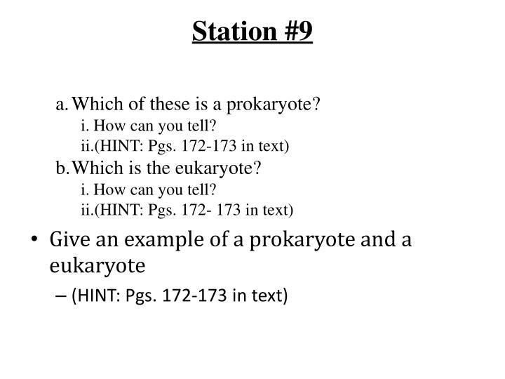 Station #9