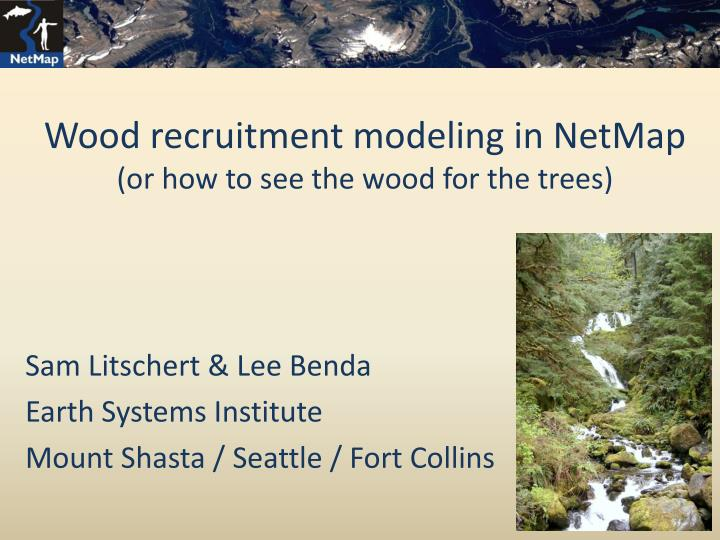 wood recruitment modeling in netmap or how to see the wood for the trees n.