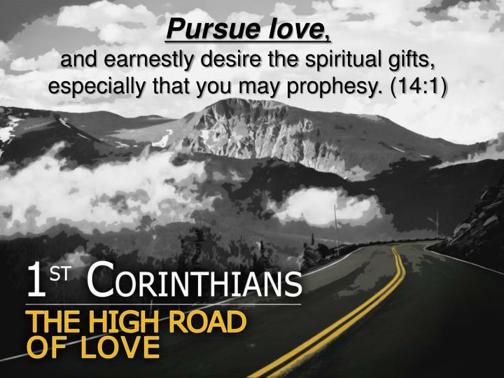 Pursue love