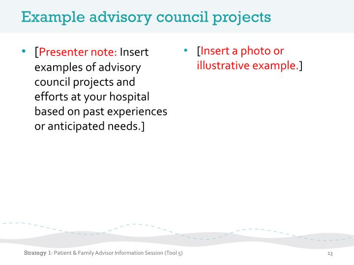 Example advisory council projects