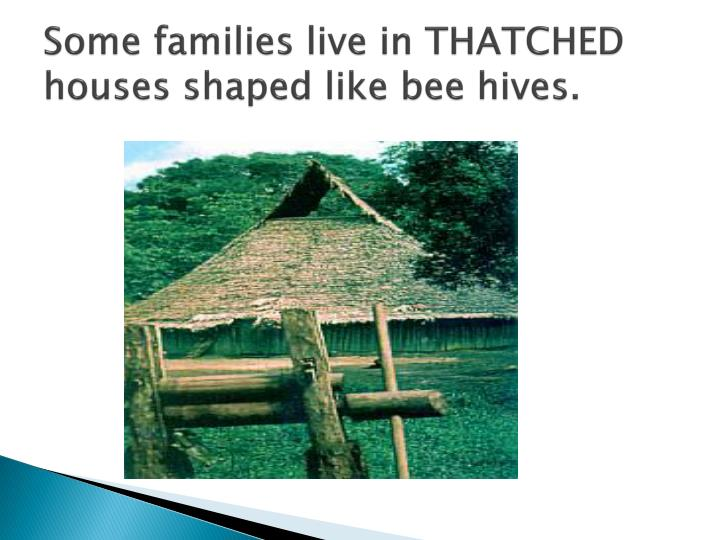 Some families live in THATCHED houses shaped like bee hives.