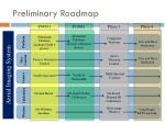preliminary roadmap