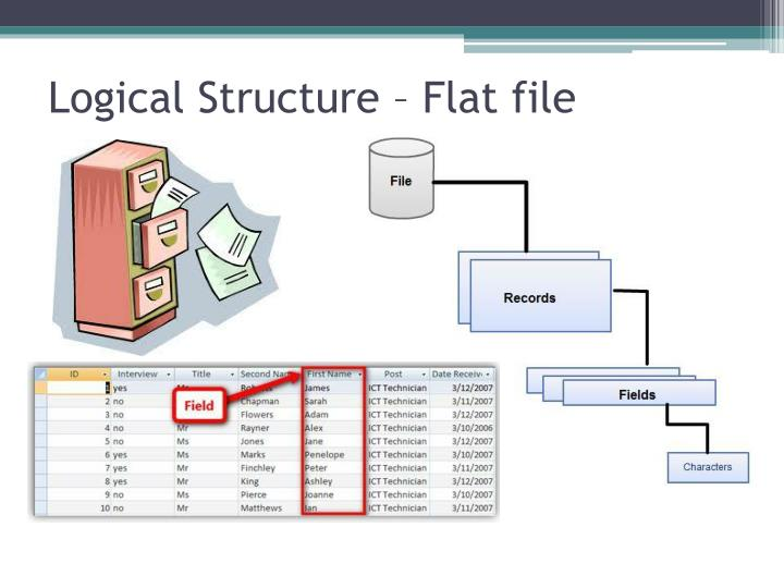 Logical Structure – Flat file