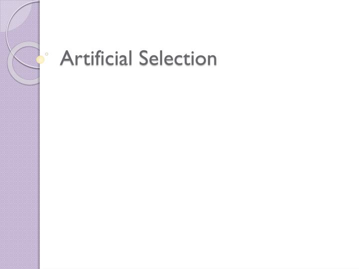 artificial selection n.