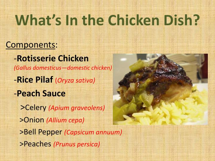 What's In the Chicken Dish?