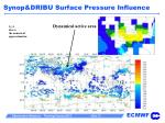 synop dribu surface pressure influence