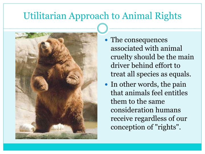 animal rights a right equally given Life may be about to change for the average german farmyard creature, zoo animal and household pet after the go-ahead was given yesterday to award animals rights in the constitution alongside.