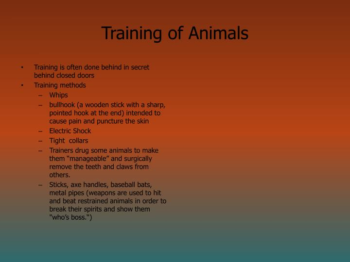 Training of Animals