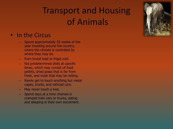 Transport and Housing