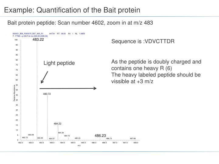 Example quantification of the bait protein
