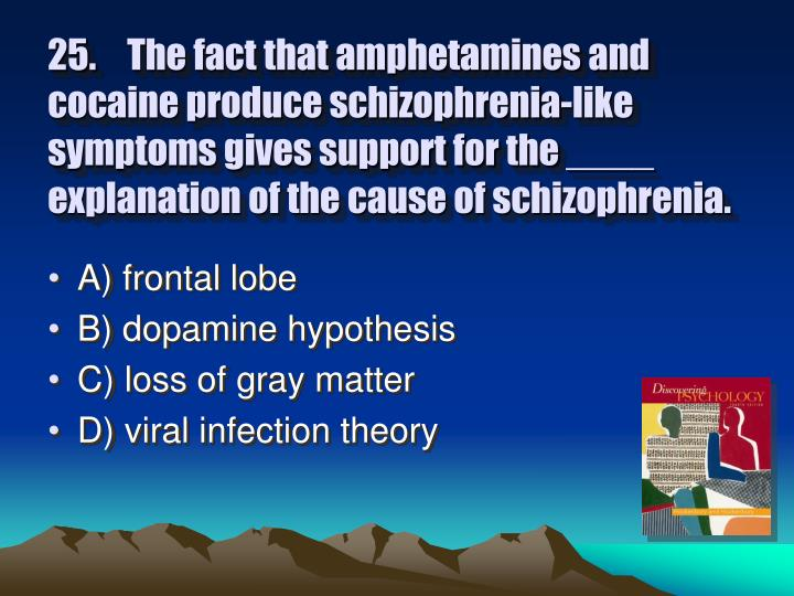 25.The fact that amphetamines and cocaine produce schizophrenia-like symptoms gives support for the ____ explanation of the cause of schizophrenia.