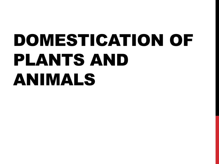 PPT - Domestication of plants and animals PowerPoint
