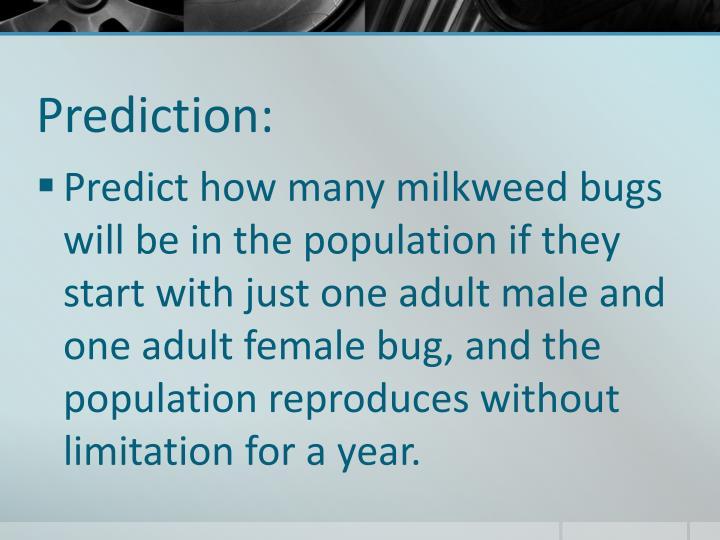 Prediction: