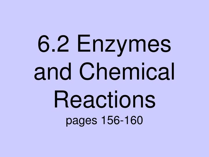6 2 enzymes and chemical reactions pages 156 160
