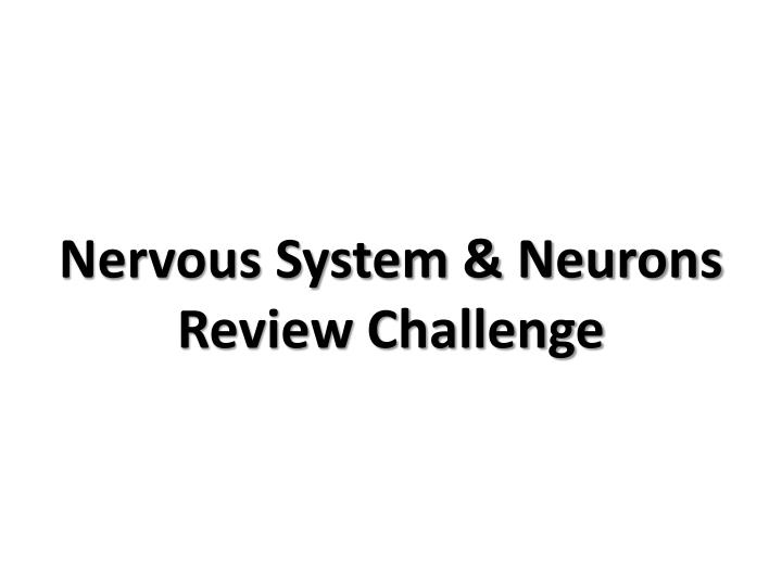 Nervous system neurons review challenge
