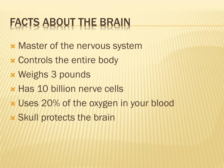 Master of the nervous system