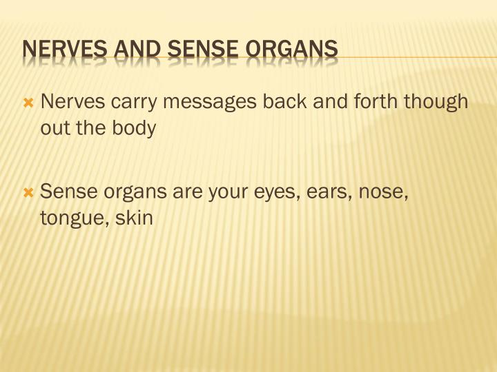 Nerves carry messages back and forth though out the body