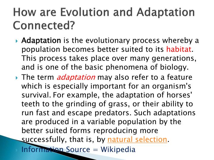 How are Evolution and Adaptation Connected?