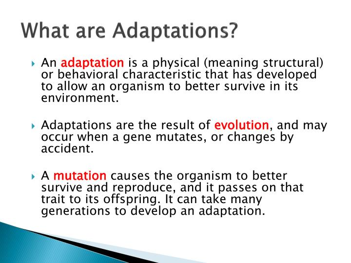 What are adaptations1