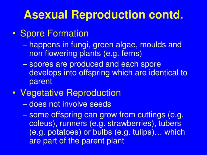 Finint asexual reproduction