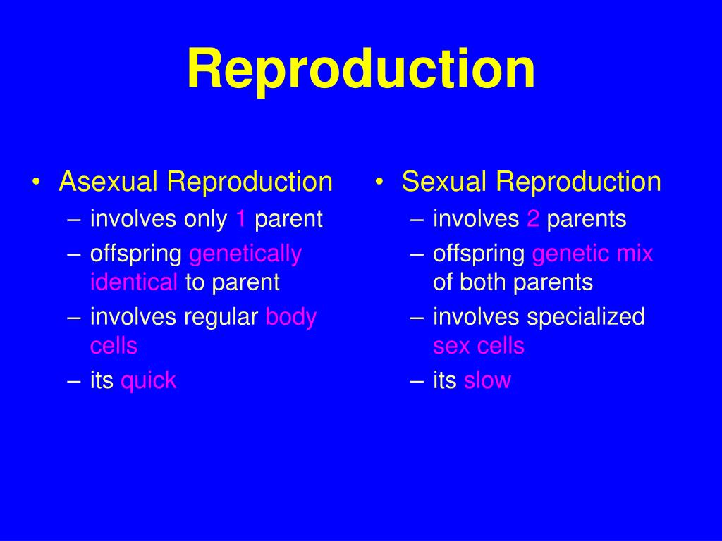 Sexual reproduction vs asexual reproduction advantage