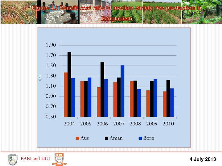 Figure 4.3 Benefit cost ratio of modern variety rice production in Bangladesh