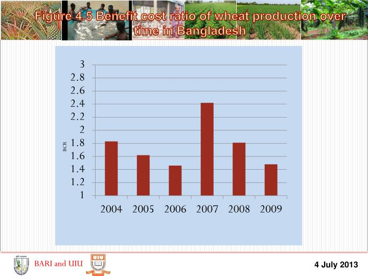 Figure 4.5 Benefit cost ratio of wheat production over time in Bangladesh