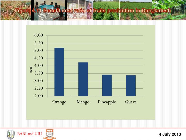 Figure 4.11 Benefit cost ratio of fruits production in Bangladesh