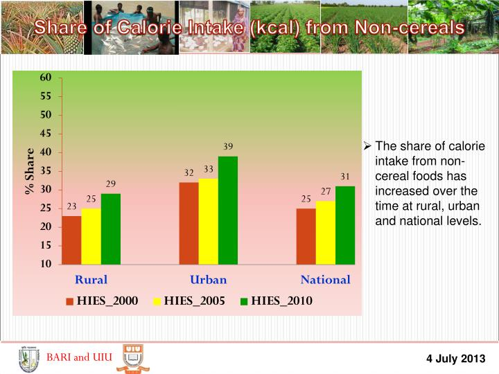 Share of Calorie Intake (kcal) from Non-cereals