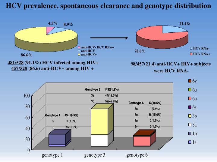 HCV prevalence, spontaneous clearance and genotype distribution