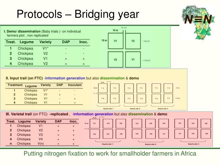 Protocols – Bridging year