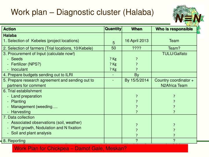 Work plan – Diagnostic cluster (