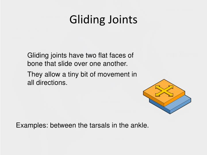 PPT - Unit 1: Types of Joints PowerPoint Presentation - ID:2436374